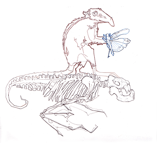 Skeleton sketch and vole with moth.
